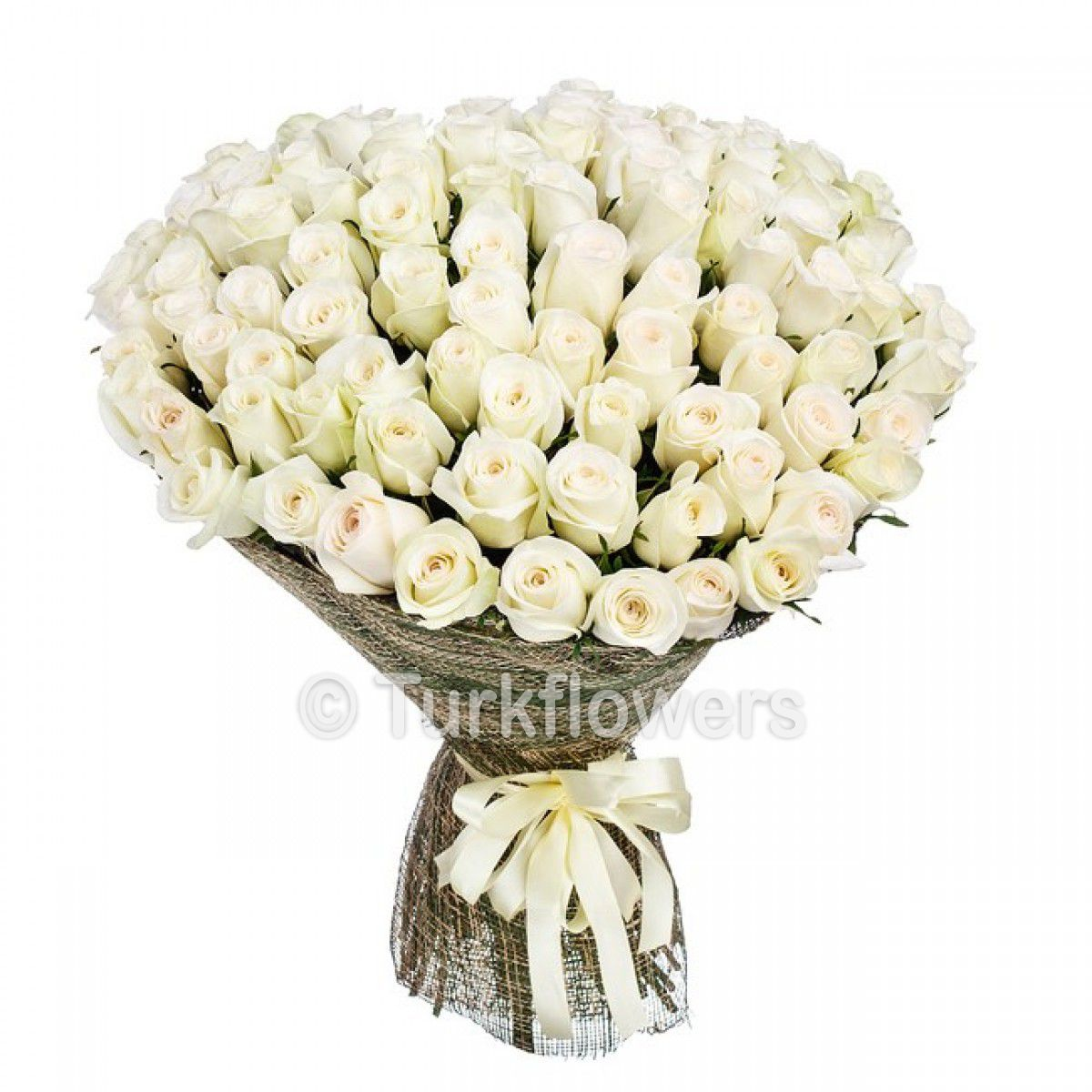 51 white Roses Bouquet