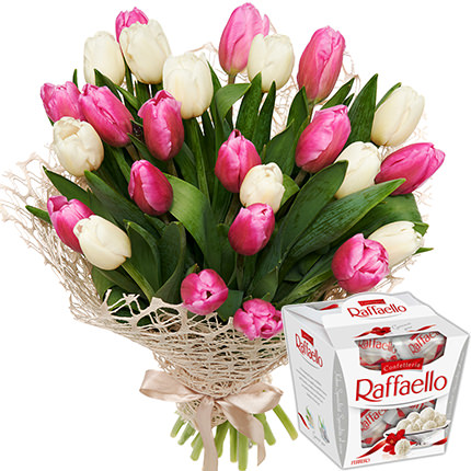 25 white and pink tulips + Raffaello