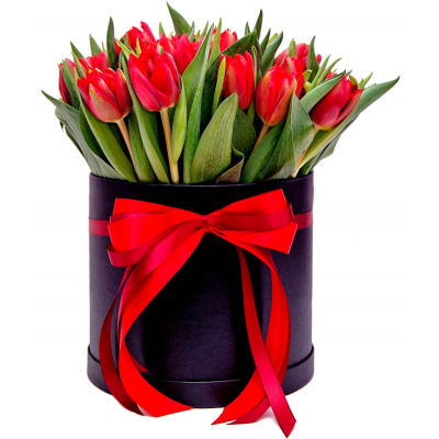 21 Red tulips in box