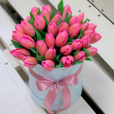 35 pink tulips in box