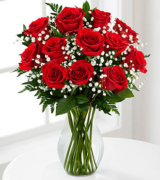 red-1-dozen-long-stem-roses---vase-included