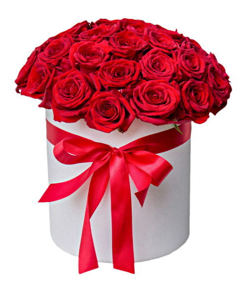 21-red-roses-in-box