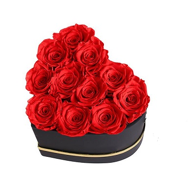 heart-red-long-lasting-roses