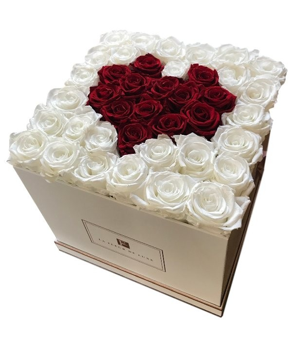 red-heart-white-long-lasting-roses