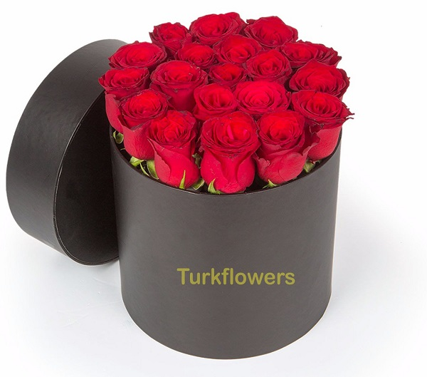 15--19-red-roses-black-box