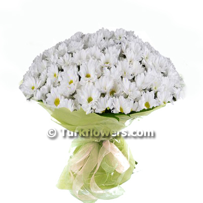 white-daisy-bouquet